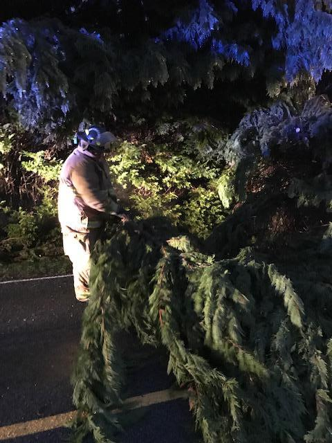 SSFD member cutting and removing limbs from down tree on Sulphur Springs Road.