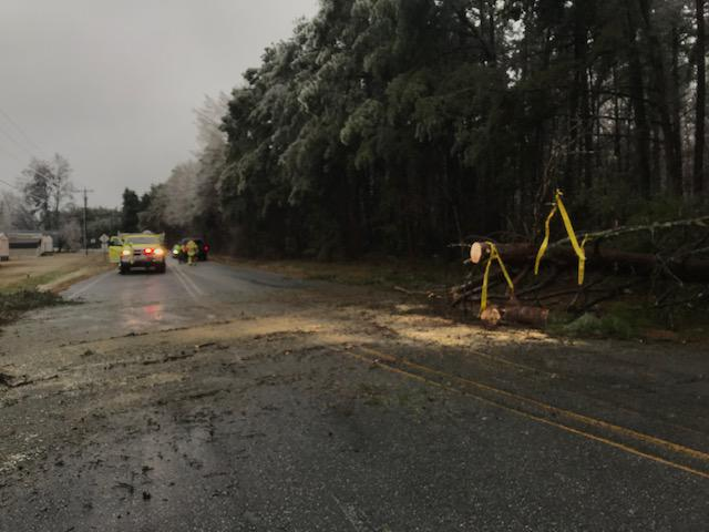 Crews were only able to remove part of the tree due to the size and location of the tree down. DOT was called to remove the rest and for clean up.
